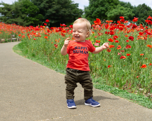 Young child laughing on walk way surrounded by red flowers.